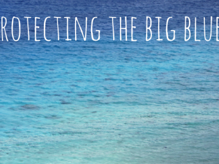 Protecting the Big Blue