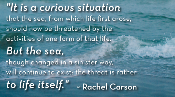 Rachel Carson Quote, Ocean Conservation Quote