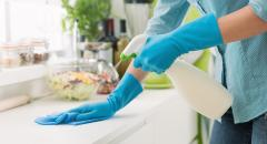 cleaner, non-toxic, all-purpose
