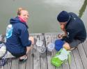 plankton, microbes, net