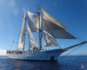 rans-Pacific, scientific, research, expeditions, Robert C. Seamans, sailing vessel,