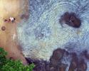oil spill, Paqueta, Guanabara Bay