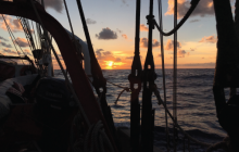 tall ship, gulf stream, marine science