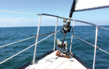 CCA, Newport Bermuda Race, offshore sailing, Clean Regattas