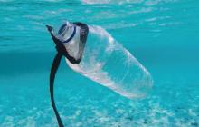 plastic pollution, plastics, marine debris