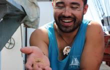 crab, marine science, tall ship